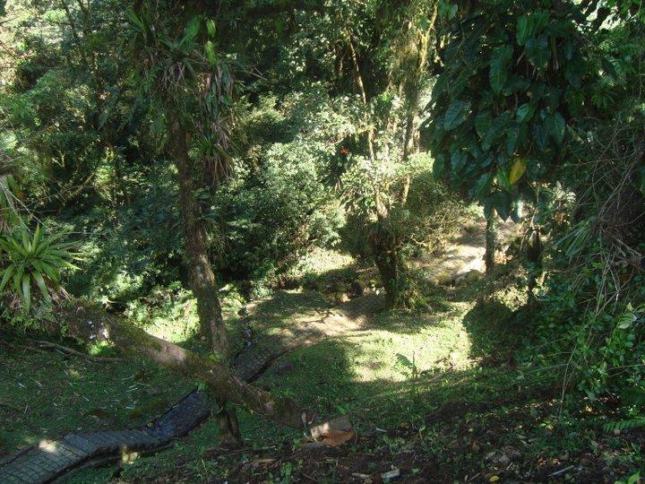 Trilha Recanto Rio Cascata