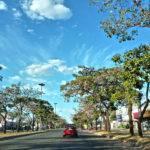Como dirigir no trânsito de Goiânia