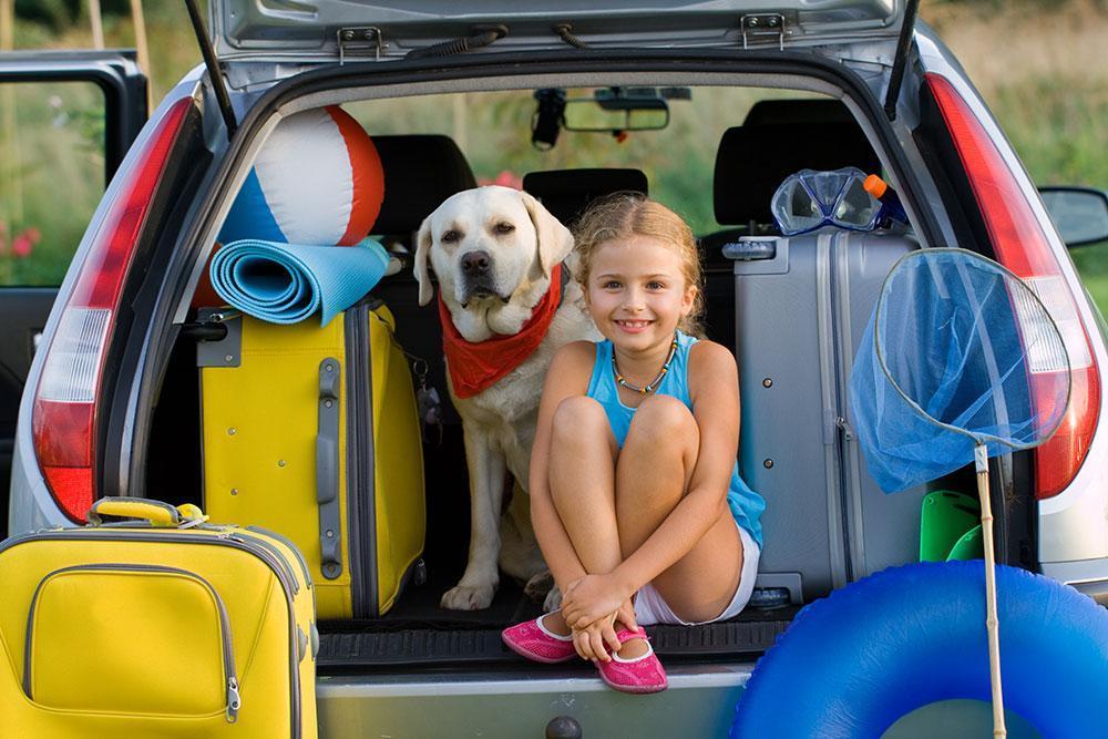 dicas-para-viajar-com-animais-de-estimacao