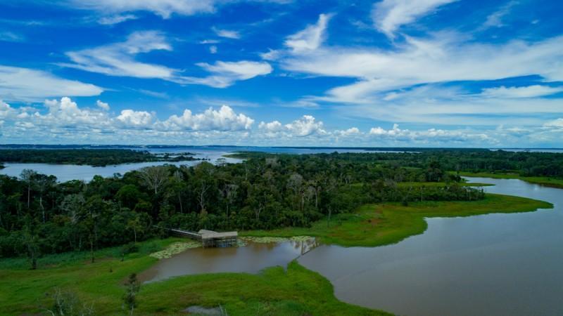 Rio e floresta em Manaus, no Amazonas