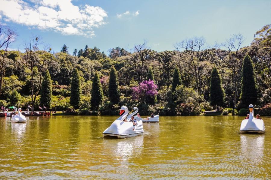 Pedalinho no Lago Negro, em Gramado. Foto: Shutterstock