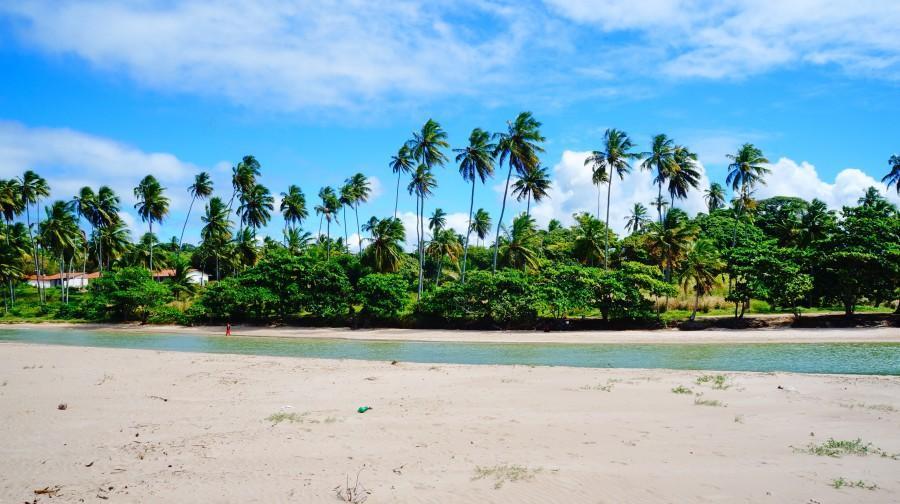 Praia de Salinas em Maragogi