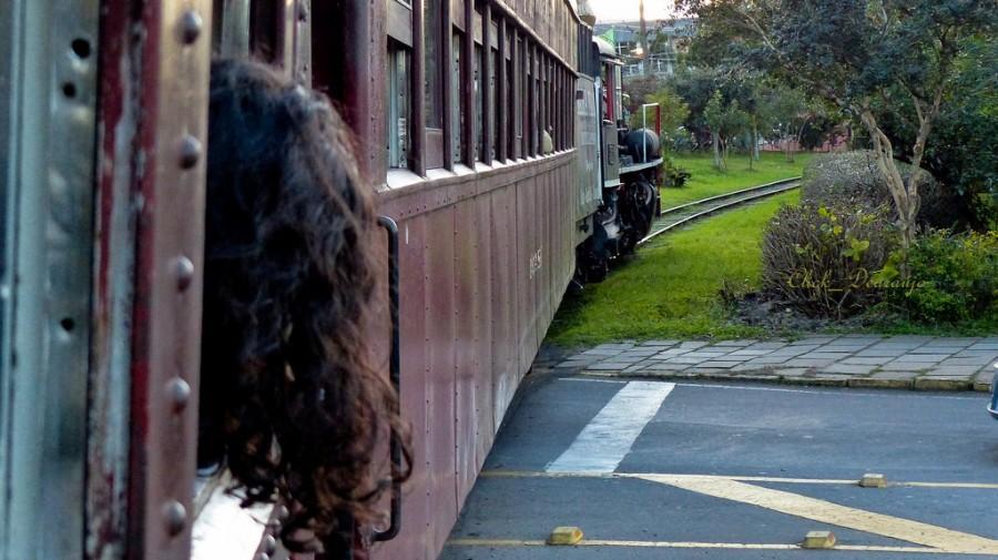 Passeio de trem em Bento Gonçalves