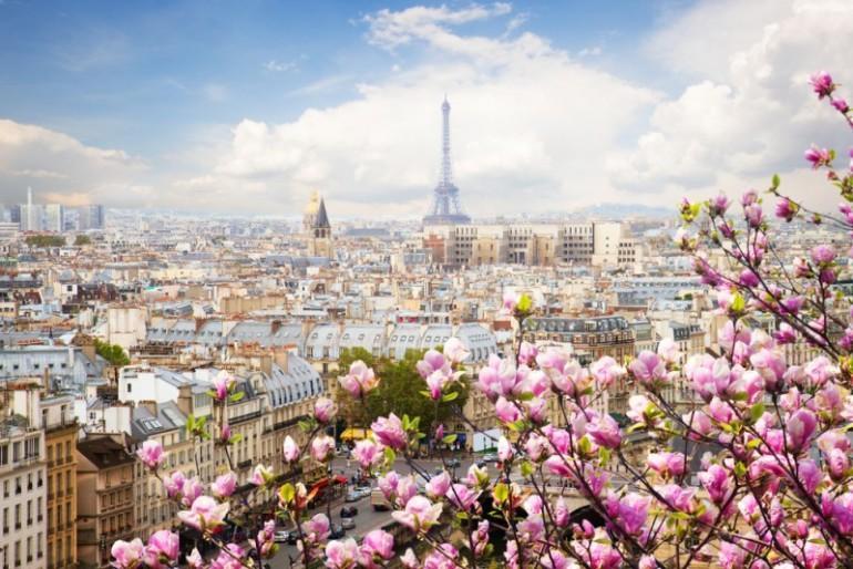 Flores parisienses e Torre Eiffel ao fundo