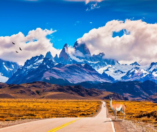 Patagônia de carro: de El Calafate a Punta Arenas
