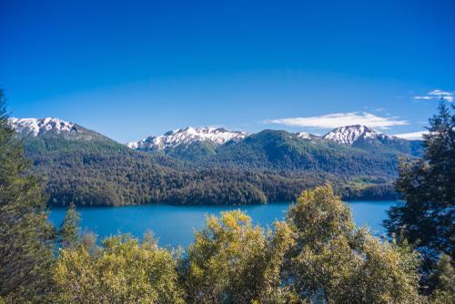 lago villarino entre a vegetação nativa da patagônia argentina