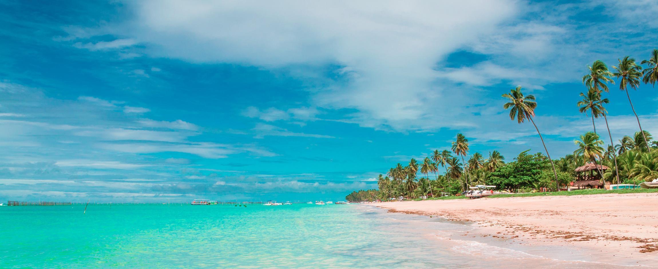 praia com coqueiros e céu azul em maceió