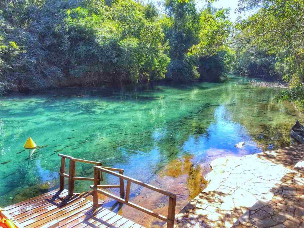 Entrada para flutuação no Rio da Prata, em Bonito, mostrando as águas cristalinas do rio e os peixes nadando.