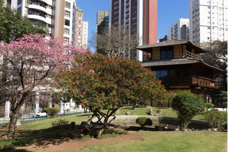 cerejeira e casa em estilo japones na praça do japão em curitiba