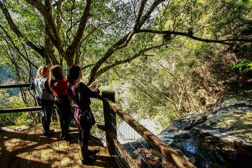 trilha e vista da natureza e cachoeira no ecoparque sperry